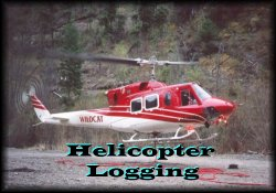 Helicopter Logging Picture Gallery